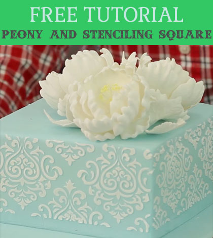 peony and stenciling square