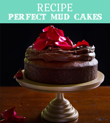 perfect mud cakes
