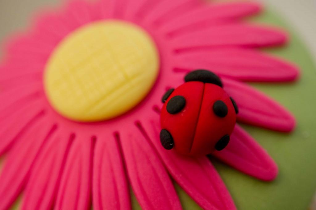 Handi Cupcakes LOW RES-1