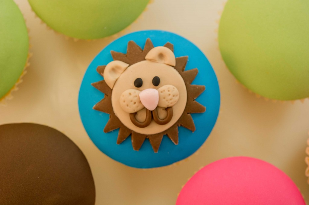Handi Cupcakes Lightroom Export Low Res-28