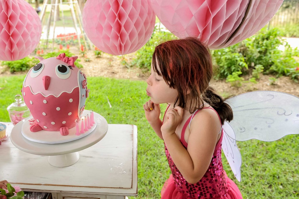 Owl Cake Party