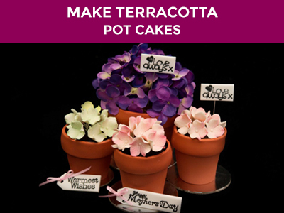 Mothers Day Flowerpot Cakes