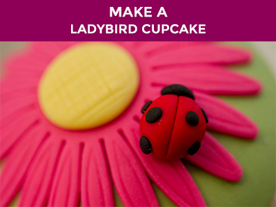 how to make ladybird cupcakes