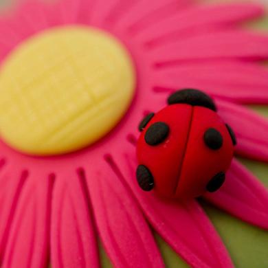 ladybird cupcake