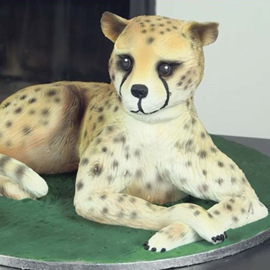 cheetah cake decorating class tutorial