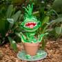 Pot Plant Flower Cake