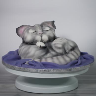 CurledUp Cat Cake