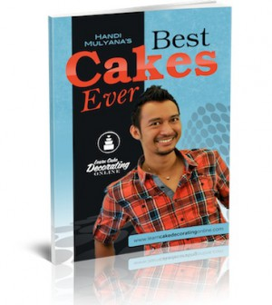 Handi's best cakes ever ebook
