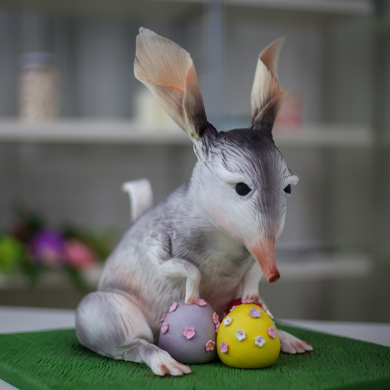Easter Bilby Chocolate Where To Buy