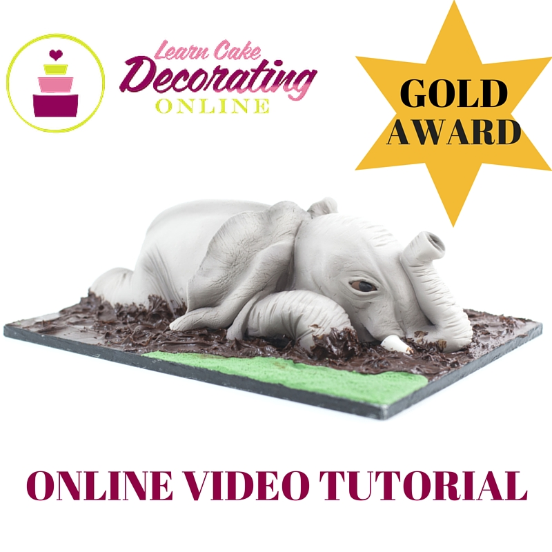 Baby Elephant Playing in the Mud Cake tutorial with Rose Macefield for Learn Cake Decorating Online