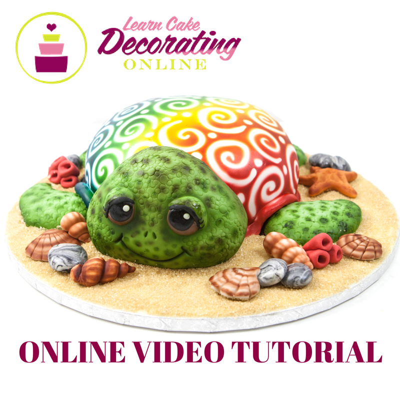 Molly Robbins Turtle Cake Tutorial